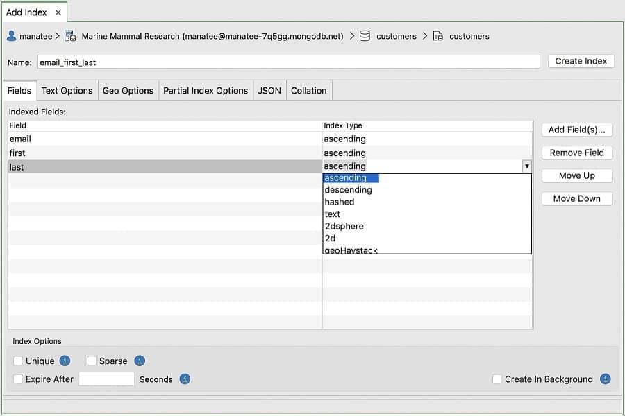 Index Manager - Studio 3T MongoDB GUI