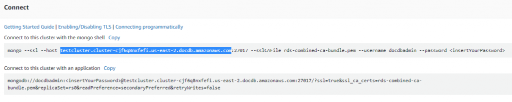 amazon cluster endpoint