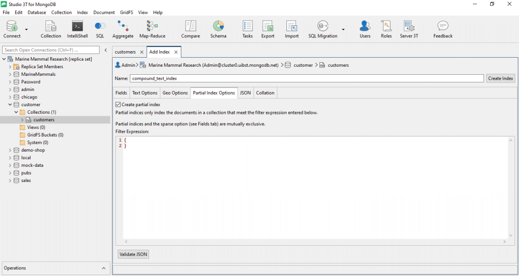 You can also set partial index options in Studio 3T, and even validate JSON before saving